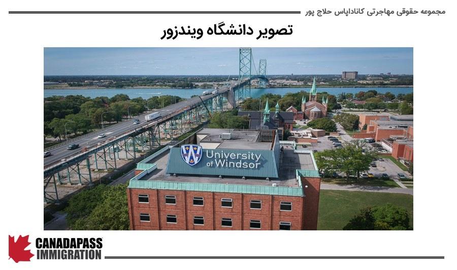 تصویر دانشگاه ویندزور windsor university