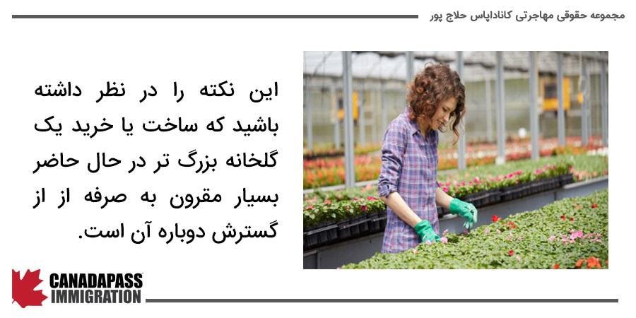 تصویر دختر در حال کاشت گیاه در گلخانه
